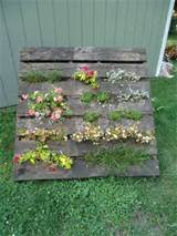 Diy Pallet Vertical Garden | Shelterness