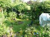 big garden ideas small garden green and gorgeous garden