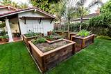 Raised Bed Vegetable Garden - Traditional - Landscape - san francisco ...
