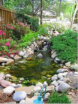 Ideas Garden Pond Design | Native Garden Design