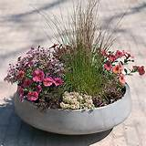straight side bowl planter