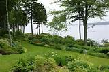 english garden front yard garden pinterest