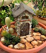 container ideas miniature succulent fairy gardens birds and blooms