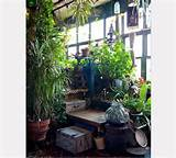 more ideas for your indoor garden environment