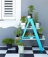 and unique garden design. Wooden ladders make excellent garden ...