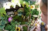 blog how to attract a fairy to your backyard