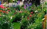 at gardening alaskan style enjoy stunning alaskan gardening photos as