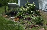 here are a few past posts about the corner shade garden