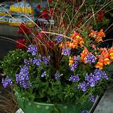 fall planters fall planter with orange snapdragons