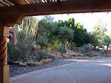 Texas xeriscape by Cactus Jack | New Mexcio- landscaping | Pinterest