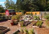 garden design idea for home grdening with fall winter vegetable garden