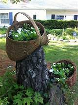 tree stump garden garden stump ideas pinterest