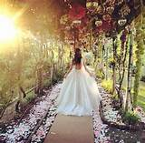 Garden Wedding - Enchanted Secret Garden Wedding... #2089377 ...