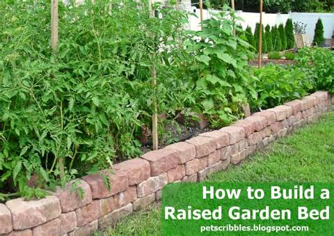 How to Build a Raised Garden Bed | The Shed by Pet Scribbles
