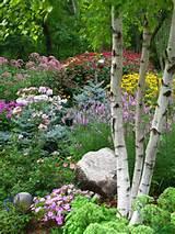 READER PHOTO! Summer abundance in a Minnesota garden | Fine Gardening