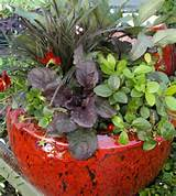 fall container garden pictures ideas