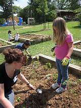 check out our grandin court elementary school garden club flickr set