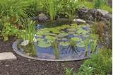 Pre-formed garden ponds