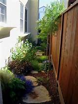 Sml narrow path idea | Garden Pictures for Ideas | Pinterest