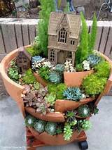 broken pot for a cactus garden garden ideas pinterest