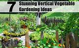 Stunning Vertical Vegetable Gardening Ideas | DIY Home Things