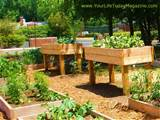 Installation of Garden Raised Planting Beds - garden beds - raised ...
