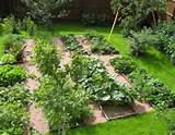 Small Backyard Vegetable Garden Ideas | PortWings.com