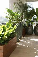 balcony privacy | balcony, veranda, terasse garden | Pinterest