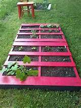 Pallet Garden | Garden Ideas | Pinterest