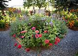 raised bed gardening ideas outdoor ideas we pinterest