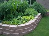 So funktioniert ein Hochbeet: Anlegen - Bepflanzen - Pflegen ...