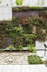 vertical gardening ideas | Living Walls | Pinterest