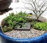 How to Create a Miniature Garden | Home Design, Garden & Architecture ...