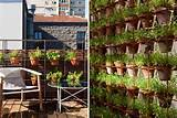 vertical garden diply com creative unusual diy vertical gardens 115422