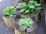 Upcycled Tree Stump And Log Ideas | The Owner-Builder Network