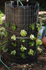 lettuce tower vertical vegetable garden idea