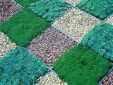 Gartengestaltung mit Steinen Gemüsen Gras geometrische Muster
