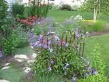 classic cottage garden my garden designs pinterest