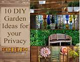 Need Privacy Diy Garden Privacy Ideas The Garden Glove Pictures to pin ...