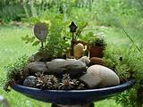 Fairy gardens anyone? | Gardening Forums