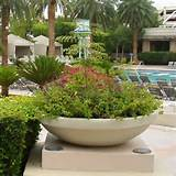 ... Bora Planter - Contemporary - Outdoor Pots And Planters - by Hayneedle