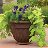 better homes and gardens romano planter multiple sizes walmart com