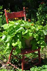 Whimsical garden chair. | garden | Pinterest