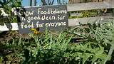 Garden in downtown Indianapolis, a small sign declares the community ...
