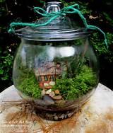 DIY Project ~ Design a Rustic Cottage Getaway … in a Terrarium ...