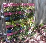 pallet vertical garden 16 do it yourself ideas wooden pallet
