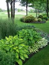Groene border planten Door 7144laura