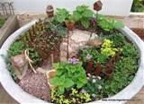 Mini Garden & Terrarium Weekend Workshop