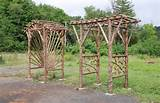 rustic pergola design ideas garden ideas pinterest