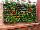 Insanely Creative Vertical Garden Ideas (35)
